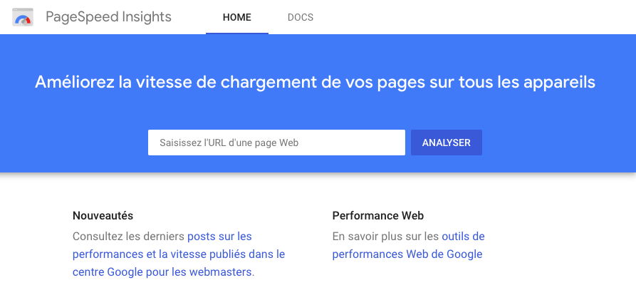 capture d'écran google page speed insights